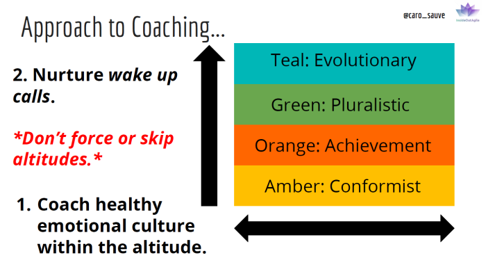 Coaching w Integral Altitudes